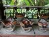 Beim laotischen Kochkurs in der Nähe von Luang Prabang