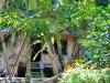 Einfache Holzhütten - eine normale Behausung in Laos