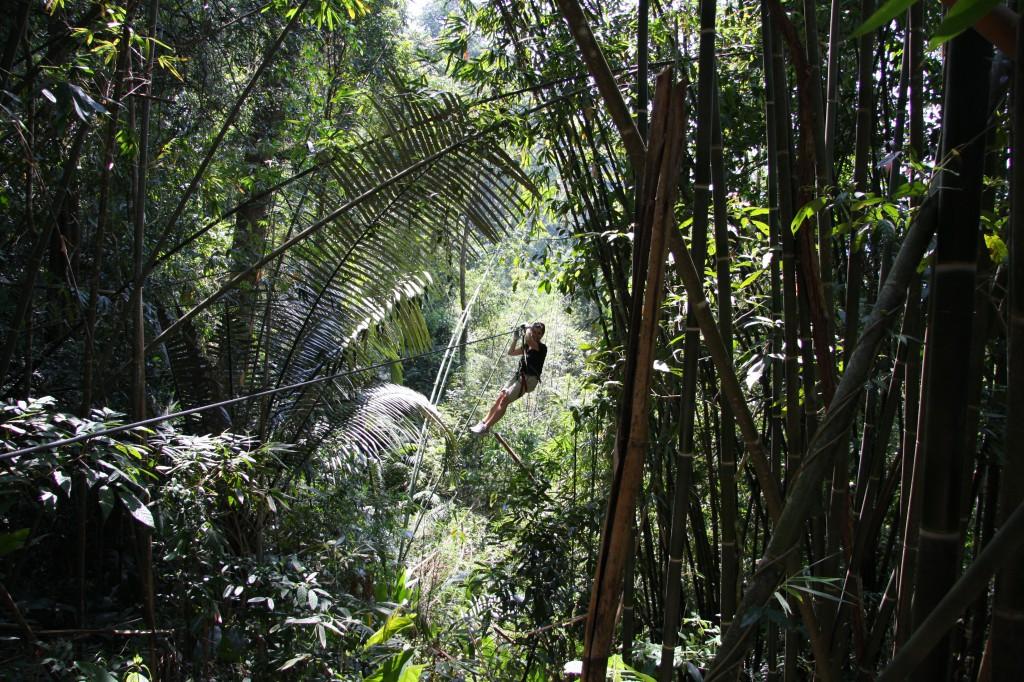 Gbbon Experience - von Baum zu Baum fliegen