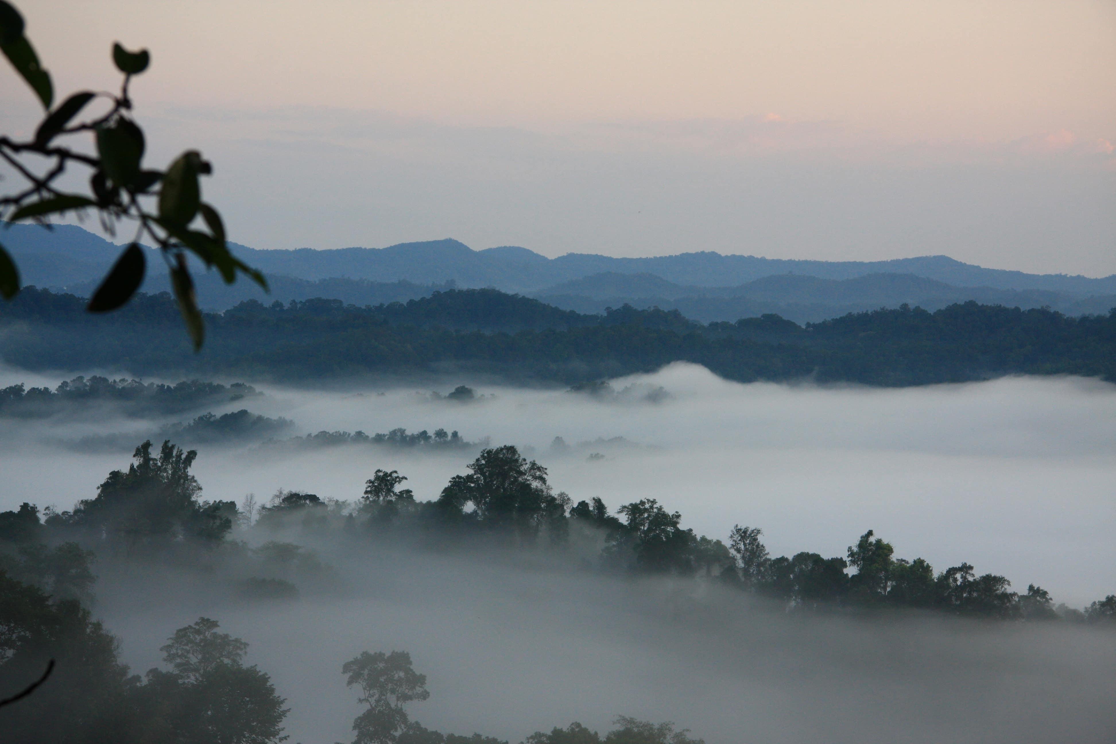 Laos Reisebericht: Der Norden von Laos