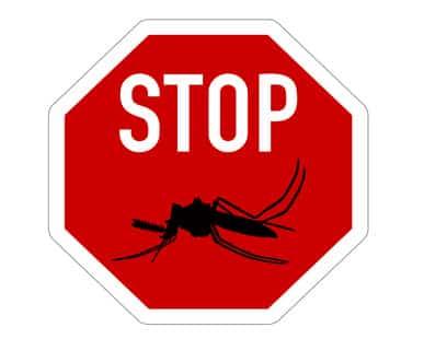 Bild von Malaria-Prophylaxe für Laos