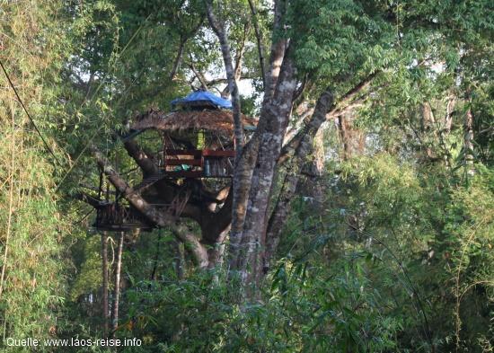 Gibbon Experience: Eines der Baumhäuser